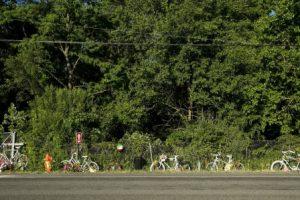 Kalamazoo Bicycle Accident